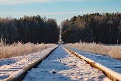 Eisenbahn herein zum Wald Stockfotografie