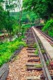 Eisenbahn im Wald Lizenzfreie Stockfotografie