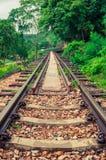 Eisenbahn im Wald Stockfotos