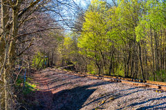 Eisenbahn-Kurve im Frühjahr Lizenzfreie Stockfotos