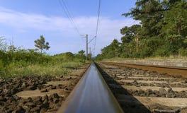 Eisenbahn linebetween Bäume Lizenzfreie Stockfotos