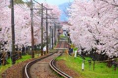 Eisenbahn mit Kirschblüte-Baum Stockbild