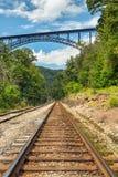Eisenbahn und große Brücke Lizenzfreies Stockbild