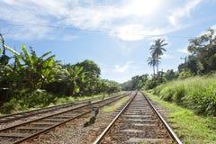 Eisenbahn von Sri Lanka Stockbilder