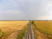 Eisenbahn zwischen Feldern Stockbilder
