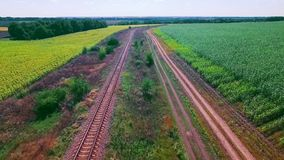 Eisenbahn zwischen Feldern stock footage