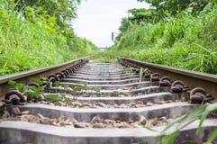 Eisenbahn zwischen Gräsern Lizenzfreie Stockfotos