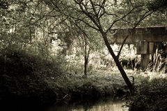 Eisenbahnbrücke im Holz Stockbild