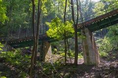 Eisenbahnbrücke im Wald in Lillafured Lizenzfreies Stockbild