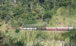 Eisenbahnlinie Badulla stockbilder