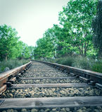 Eisenbahnlinie, die ländliche Landschaft kreuzt Stockbild