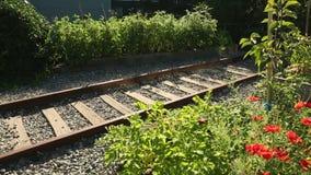 Eisenbahnlinie-Gemeinschaftsgarten-Transportwagenschuß stock video