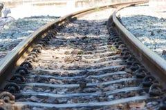 Eisenbahnlinie, Linie, die Eisenbahnlinie kreuzt Stockbilder