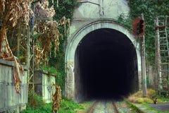 Eisenbahntunnel in den Bergen Stockbild