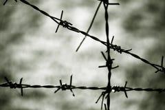 Eisendrahtzaun Lizenzfreies Stockfoto