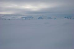 Eisfeld in Grönland Stockfotografie