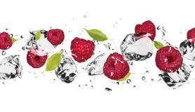 Eisfrucht Stockfoto