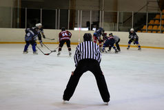 Eishockeyschiedsrichter stockfotografie