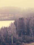 Eisige hügelige Felder der Landschaftsansicht mit Bäumen Stockfoto
