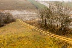 Eisige hügelige Felder der Landschaftsansicht mit Bäumen Lizenzfreie Stockfotografie