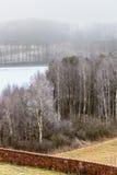 Eisige hügelige Felder der Landschaftsansicht mit Bäumen Lizenzfreie Stockfotos