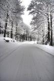 Eisige landwirtschaftliche Straße durch Wald Lizenzfreies Stockbild