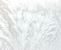 Eisige Muster Stockbilder