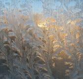 Eisige Muster auf dem Glas Stockfotografie