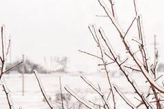 Eisige Niederlassungen und Schneefälle außerhalb des Fensters Lizenzfreie Stockbilder