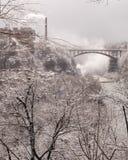 Eisige städtische Fluss-Schlucht. Vertikale Lagebestimmung. Stockbilder