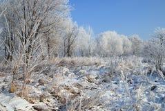 Eisige weiße Winterlandschaft Lizenzfreies Stockfoto