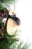 Eisige Weihnachtsverzierung Lizenzfreie Stockbilder