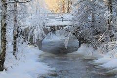 Eisige Winterbrücke Stockbild