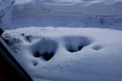 Eisiger blauer schöner Schnee lizenzfreie stockfotos