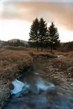 Eisiger Fluss Stockfotografie