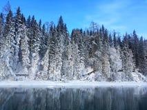 Eisiger Kanas See-Wald im Winter Lizenzfreies Stockbild