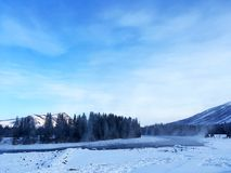 Eisiger Kanas See-Wald im Winter Stockbild