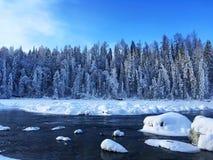 Eisiger Kanas-Wald im Winter Lizenzfreie Stockbilder