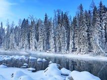 Eisiger Kanas-Wald im Winter Lizenzfreies Stockfoto