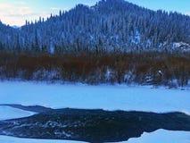 Eisiger Kanas-Wald im Winter Stockbild