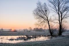 Eisiger Morgen Stockbilder