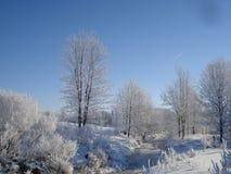 Eisiger Morgen in Ontario Lizenzfreie Stockfotos