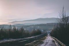 Eisiger Nebel der Winterstraße morgens stockfotografie