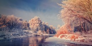 eisiger nebelhafter Morgen auf dem Fluss Stockfoto