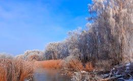 Eisiger nebelhafter Morgen auf dem Rive Stockfoto