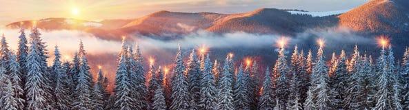 Eisiger Sonnenaufgang in Karpaten Stockfoto