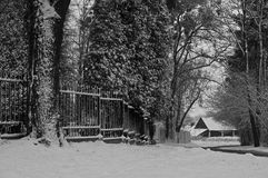 Eisiger Tag des Winters stockfotos