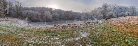 Eisiger und des verschneiten Winters Wald nahe See stockbilder