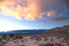 Eisiger Wüsten-Sonnenaufgang lizenzfreies stockfoto
