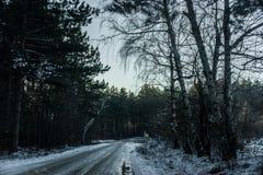 Eisiger Weg Stockbild